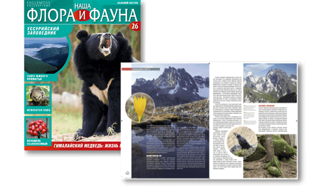 Magazine Our flora and fauna